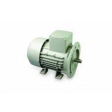 Motor pompa lapte 220 V/0,55 Kw